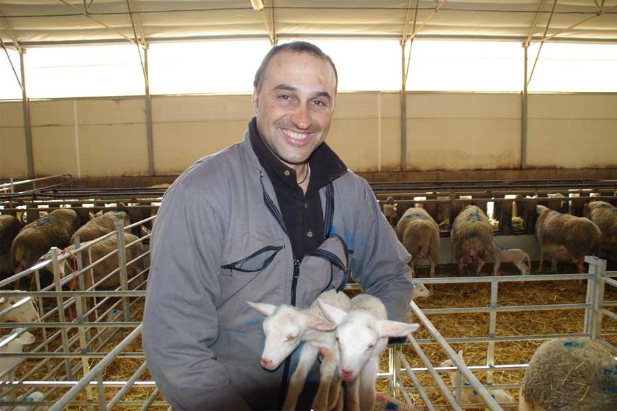 Bruno Vezinhet, producteur d'agneau bio