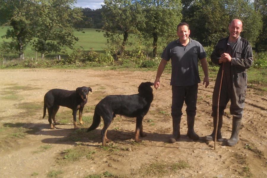 Mathieu et Paul Causse, éleveurs de boeuf bio
