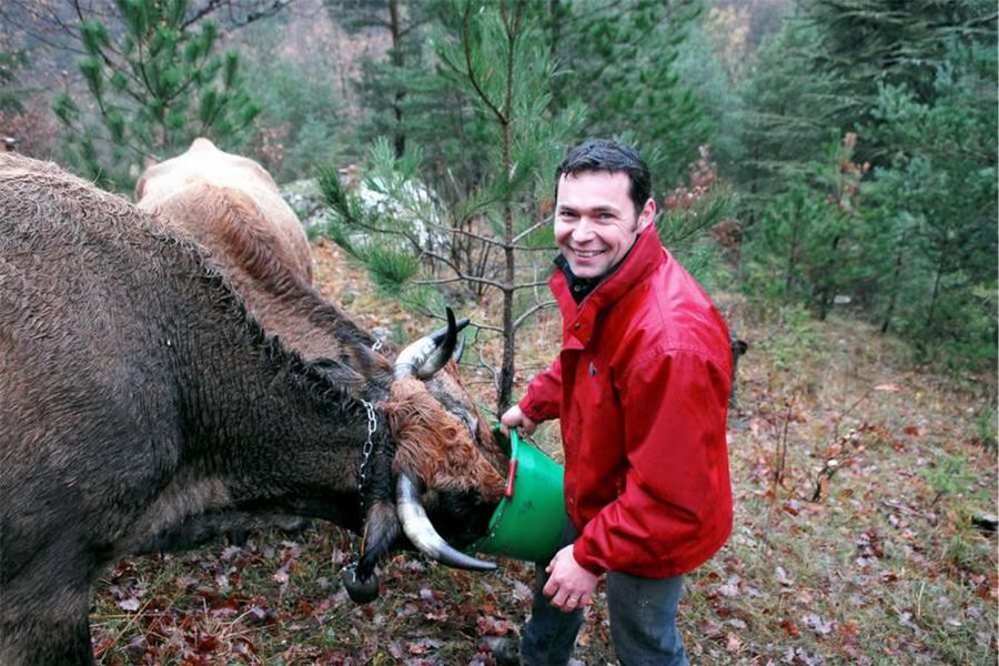 Stéphane Thiry, producteur de boeuf, veau et agneau bio